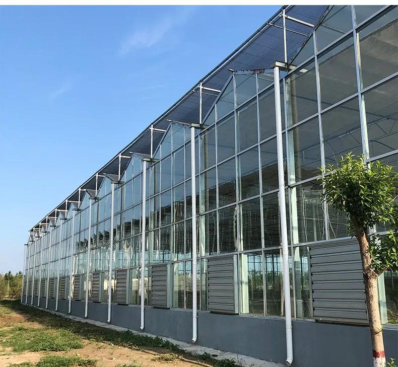 玻璃温室的维修和保养