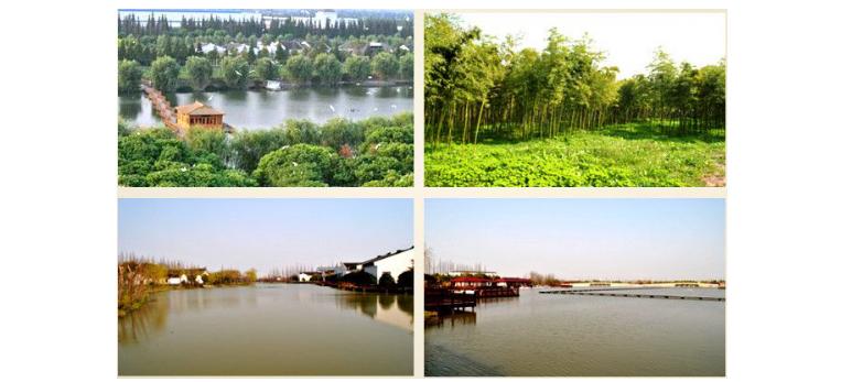 美丽的常熟蒋巷生态园基地