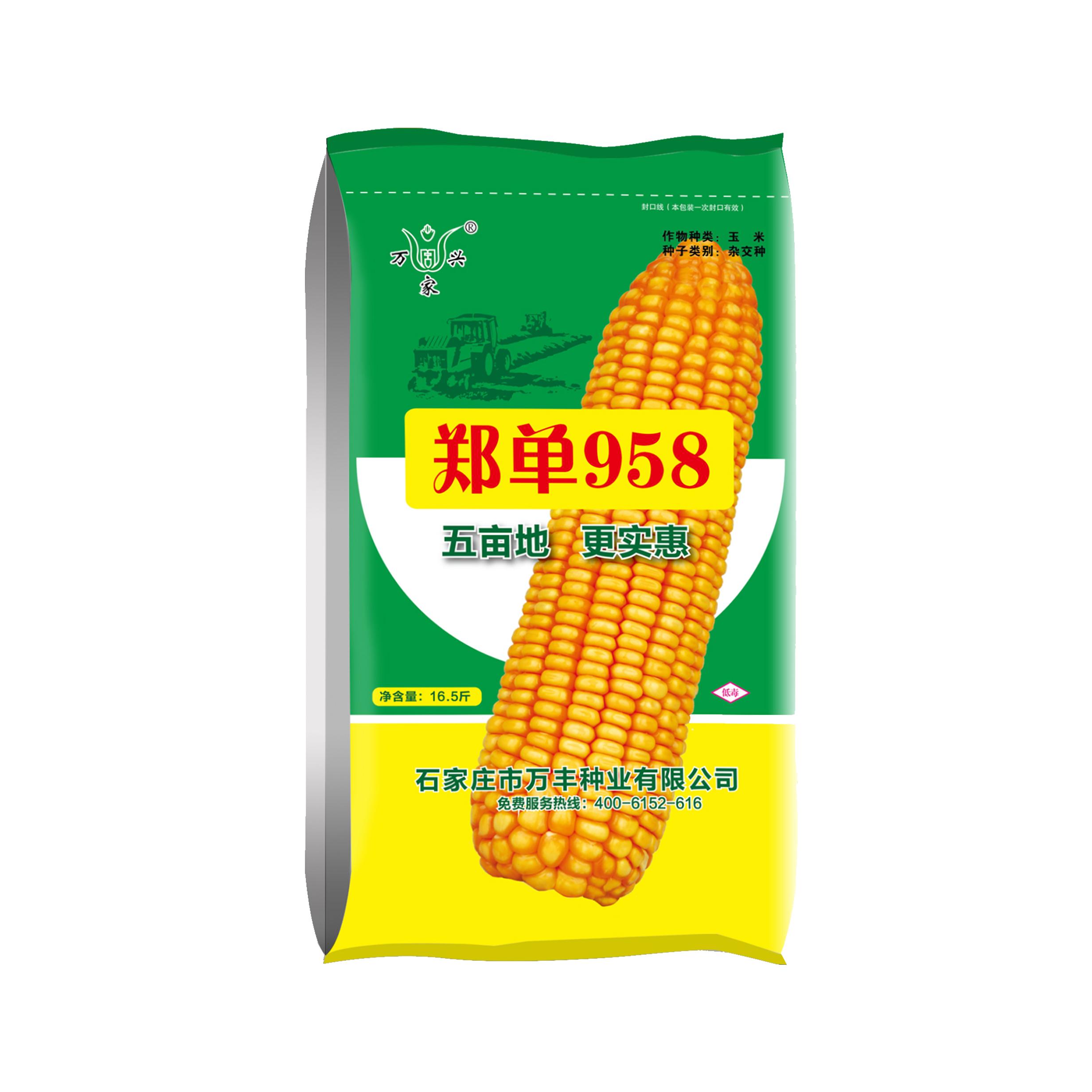 如何選擇玉米種子