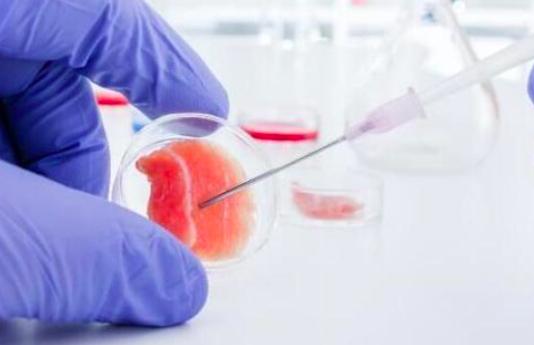 癌症干细胞的新调控机制
