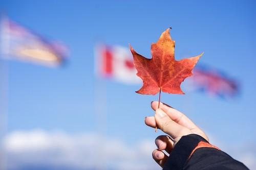 """加拿大50个""""黄金""""专业解析---电子商务"""