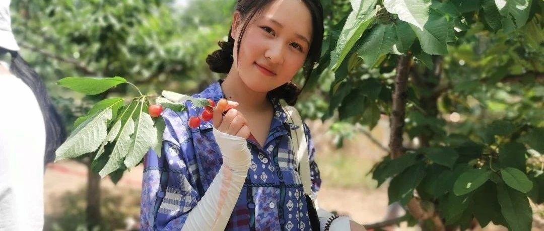 描绘春天,放飞梦想--郑州力度樱桃写生季