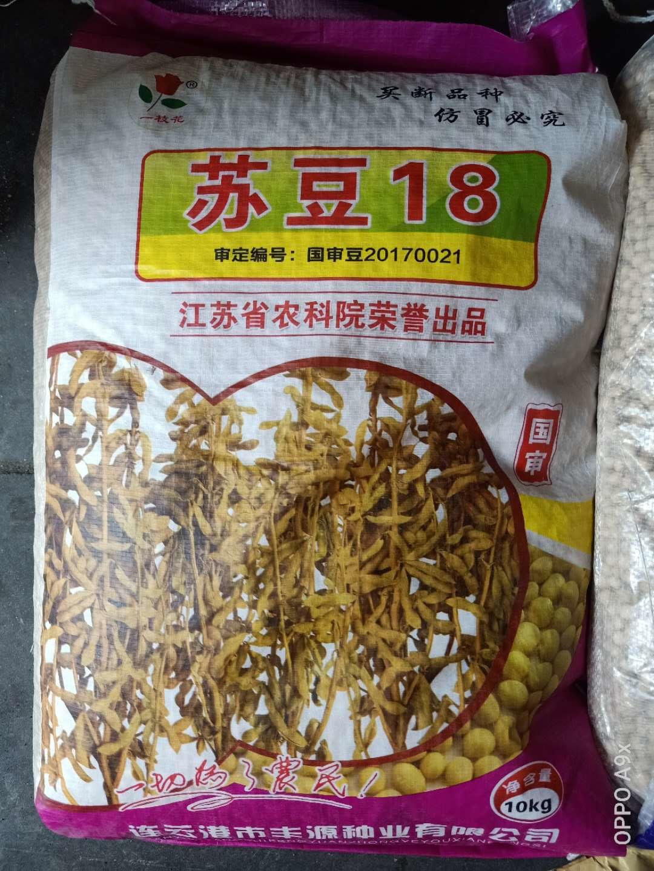 苏豆18 黄豆种子批发