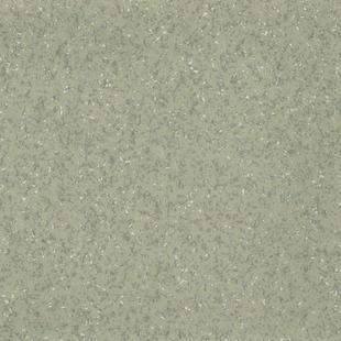 多层复合PVC地板 NEW ACCZENT TERRA