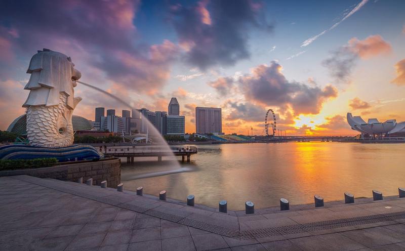 新加坡自雇移民步骤详解
