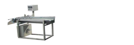 旋盖/耳盖全自动生产线(可配天然气烘干机)(250-300/分)