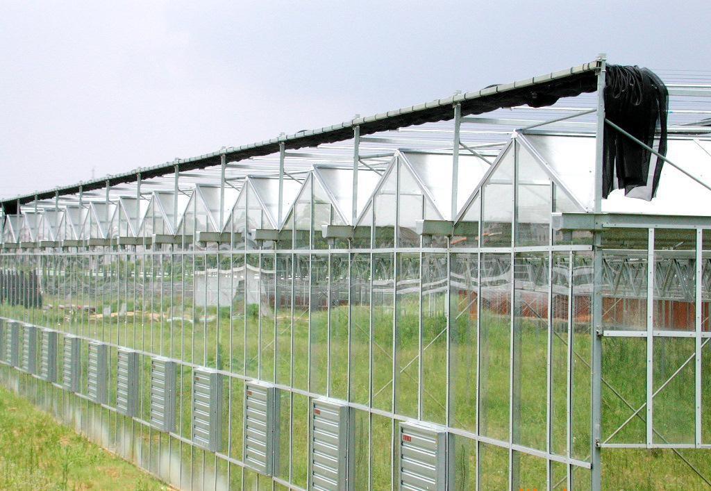 常见的玻璃温室大棚都有哪些用途和规格?