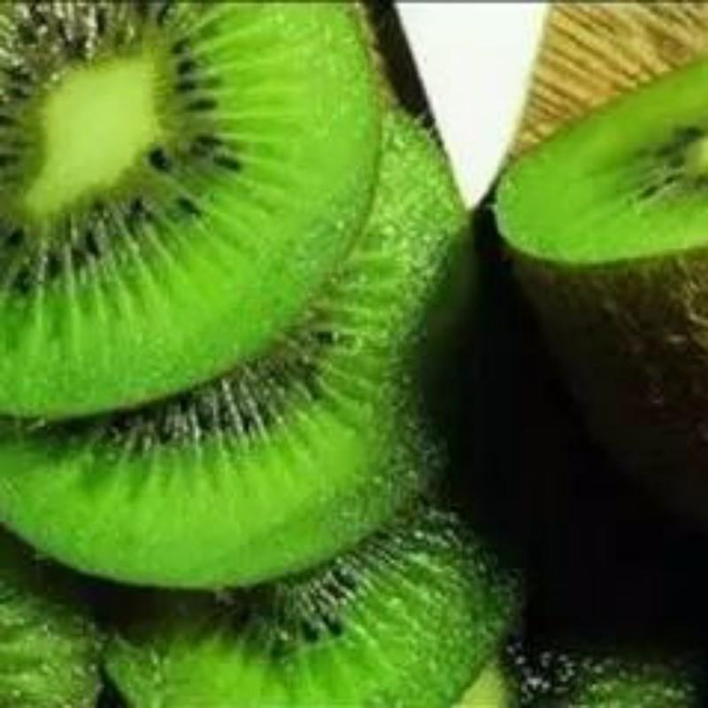 碧玉猕猴桃 种苗