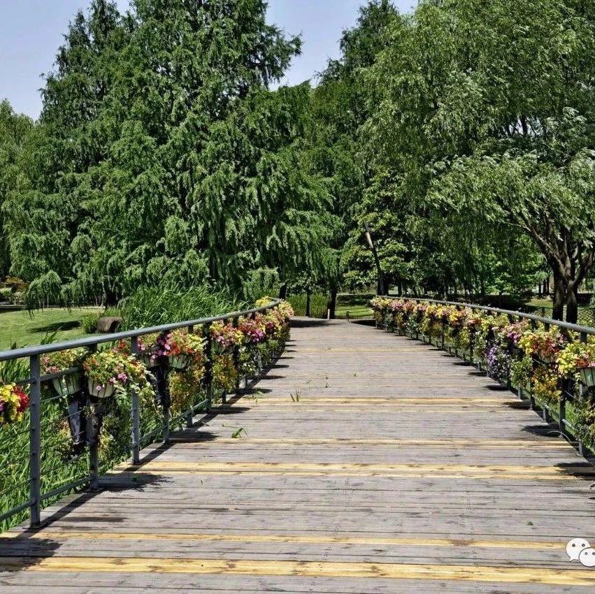 上海:就乡土树种名录,召开专家咨询会