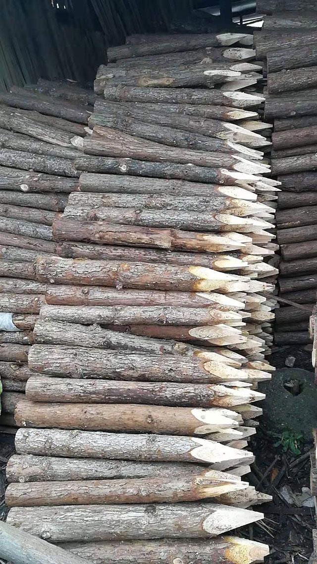 市场观察:中纤板销量持续向好杉木指接板销量减少