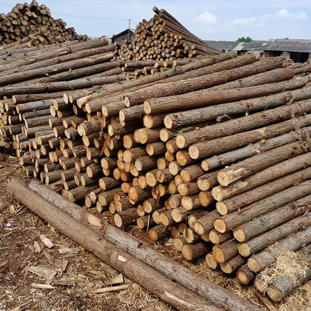 园林绿化桩规格