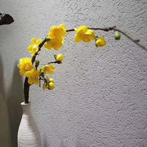 福州墙面艺术漆的优缺点
