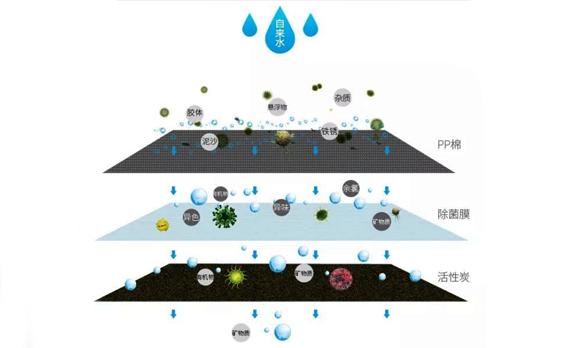 空气污染和水污染时有发生,如何才能保护家庭饮水健康呢?