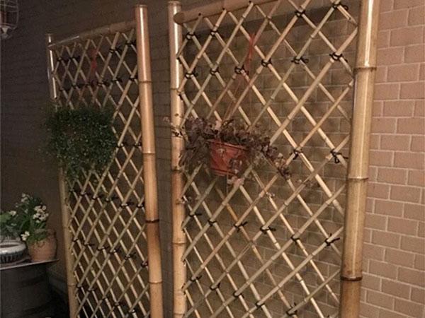 竹篱笆设计