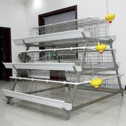 三层阶梯式蛋鸡笼