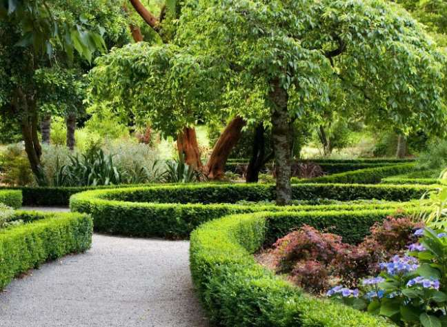 园林绿化的注意事项是什么