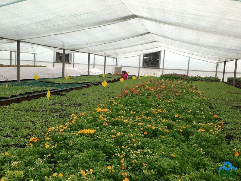 2010天时农业科技园