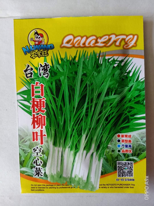 台湾白梗柳叶空心菜