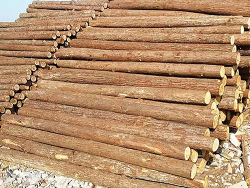 圆木桩规格