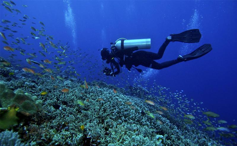 JK潜水为您解答自由潜水的减压问题