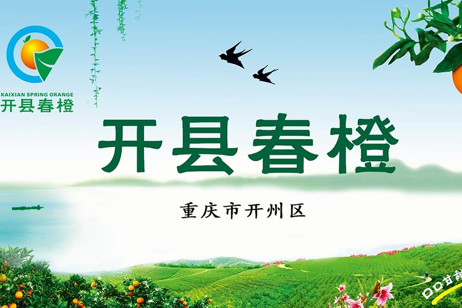 涪陵广告宣传片价目表