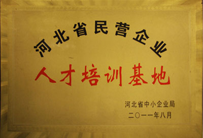 广西公司荣誉