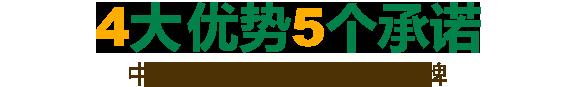 4大优势5个承诺