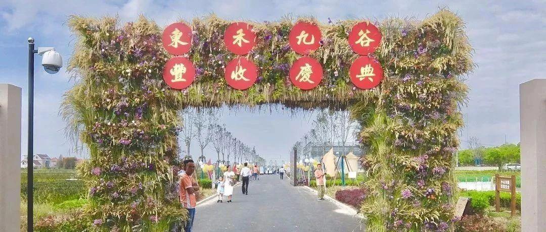 中国花博会:月季苗木,储备技术培训在上海举办