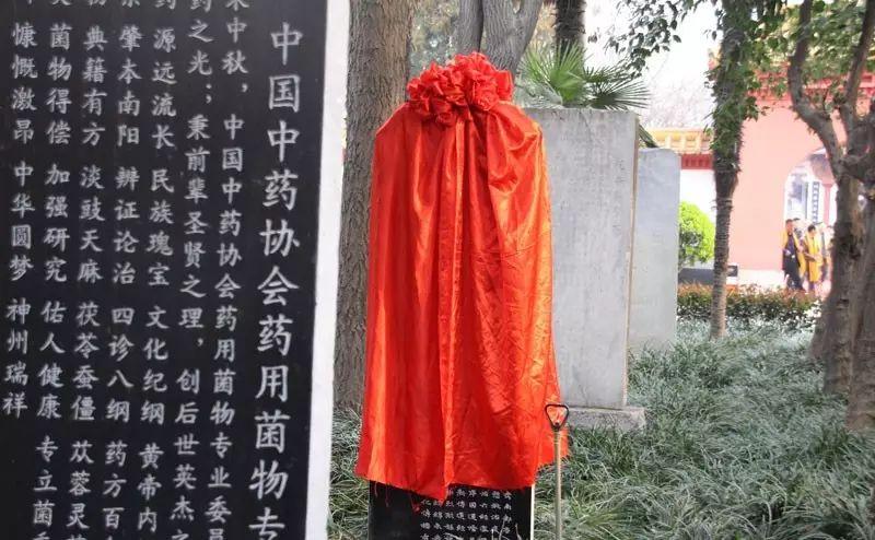 仲景中医文化传播有限公司在医圣祠树立医圣仲景功德颂碑