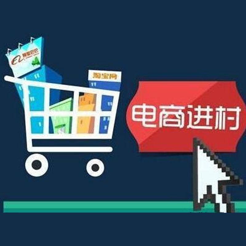 左香云代表:促进农村电商贵阳app开发健康发展
