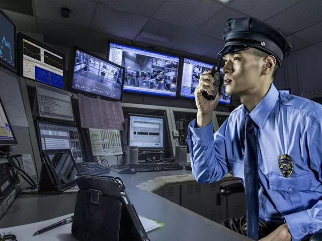 安全技术质询服务