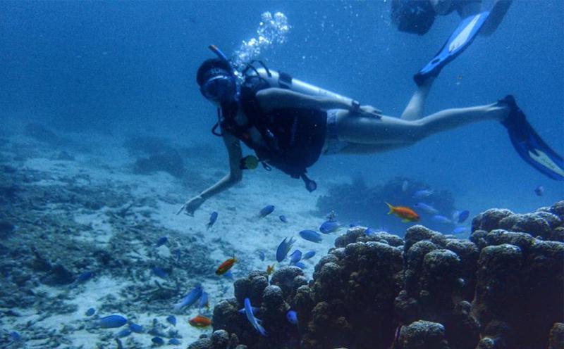普吉岛潜水,到底有多好?