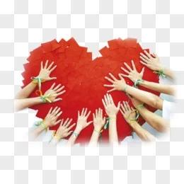 :团结合作是国际社会战胜疫情有力武器
