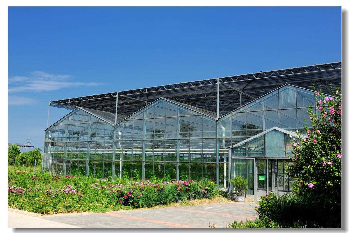现代化智能温室大棚的栽培要素以及温室大棚如何选择