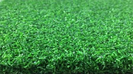 16303-15S-30曲丝草坪