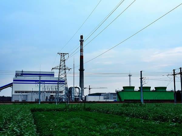 国能望奎生物发电有限公司合作关系