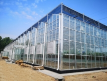 日光温室在各领域的应用将会越来越多