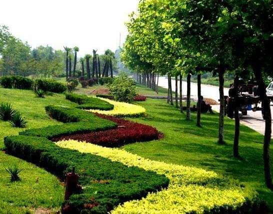 园林绿化有哪些需要注意的