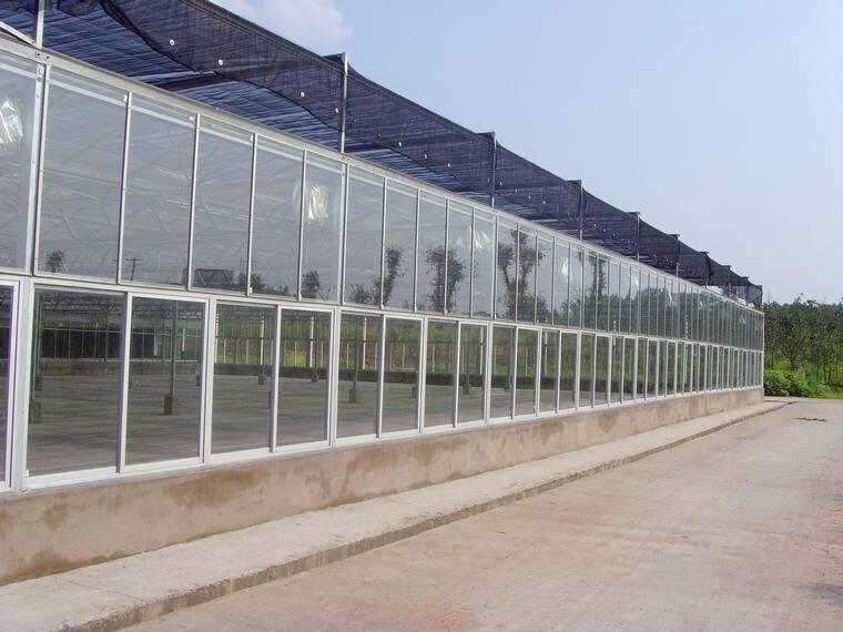 广东省中山玻璃温室
