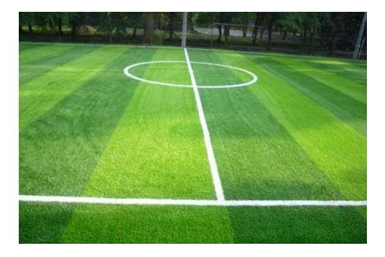 人造草坪维护保养要点