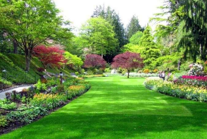 园林绿化养护基本要求须