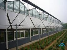 玻璃温室大棚蔬菜田的管理是什么呢