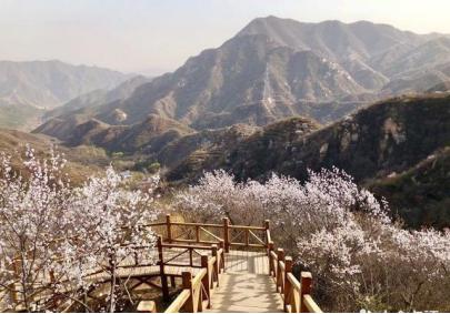 防腐木厂家简析:防腐木为园林景观增添利好