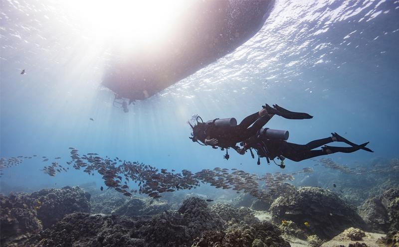 潜水的你,是否知道潜水的这些好处?