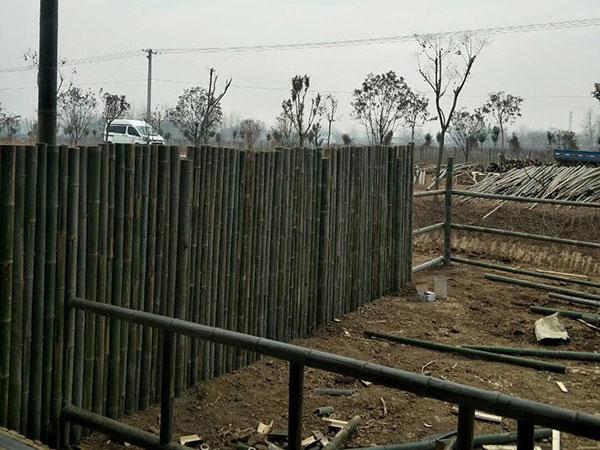 常州竹篱笆护栏