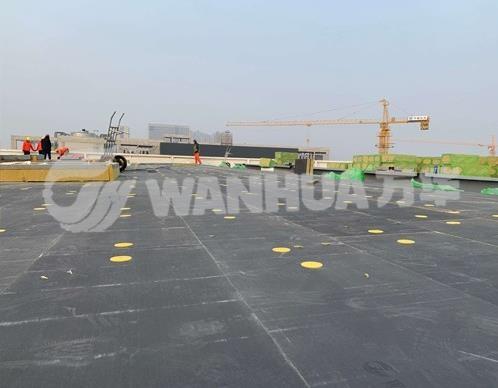 郑州宇通电动客车工程技术中心项目 (2)