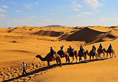 20年消失了750万亩的沙漠,现在成了的旅游景点