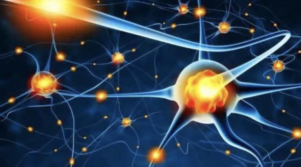 中科西部研究院:干细胞糖尿病并发症有望攻克!