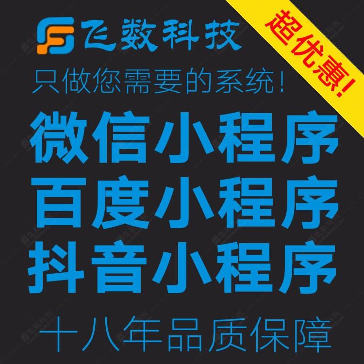 seo页面优化多少费用飞数科技