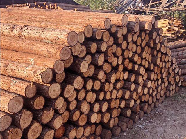 杉木桩的生产材料怎么选择